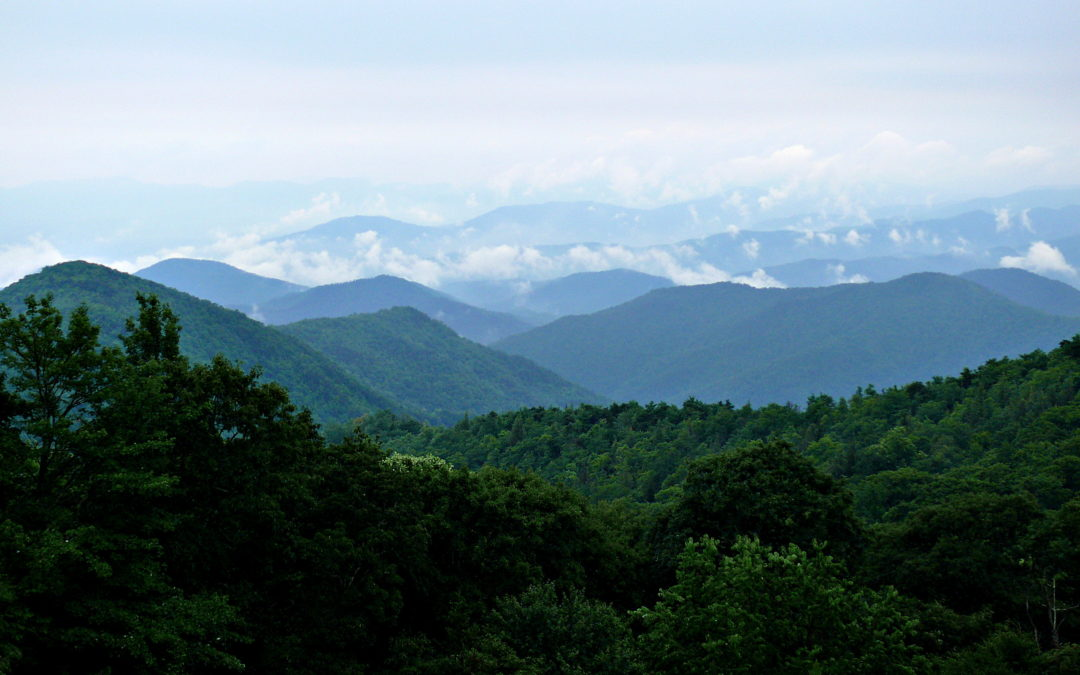From Forest Hills to the Blue Ridge Mountains